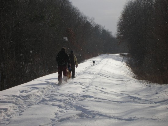 Snowshoeing along railroad tracks near the St. Croix River